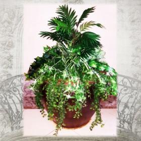 צמחיה מלאכותית מיקס