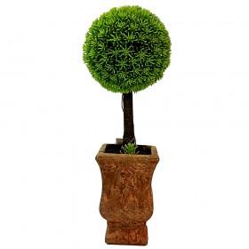 עץ ירוק בצורת כדור