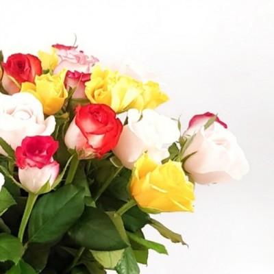 מיקס 25 ורדים צבעוניים