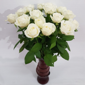 ורדים לבנים כולל הגרטל
